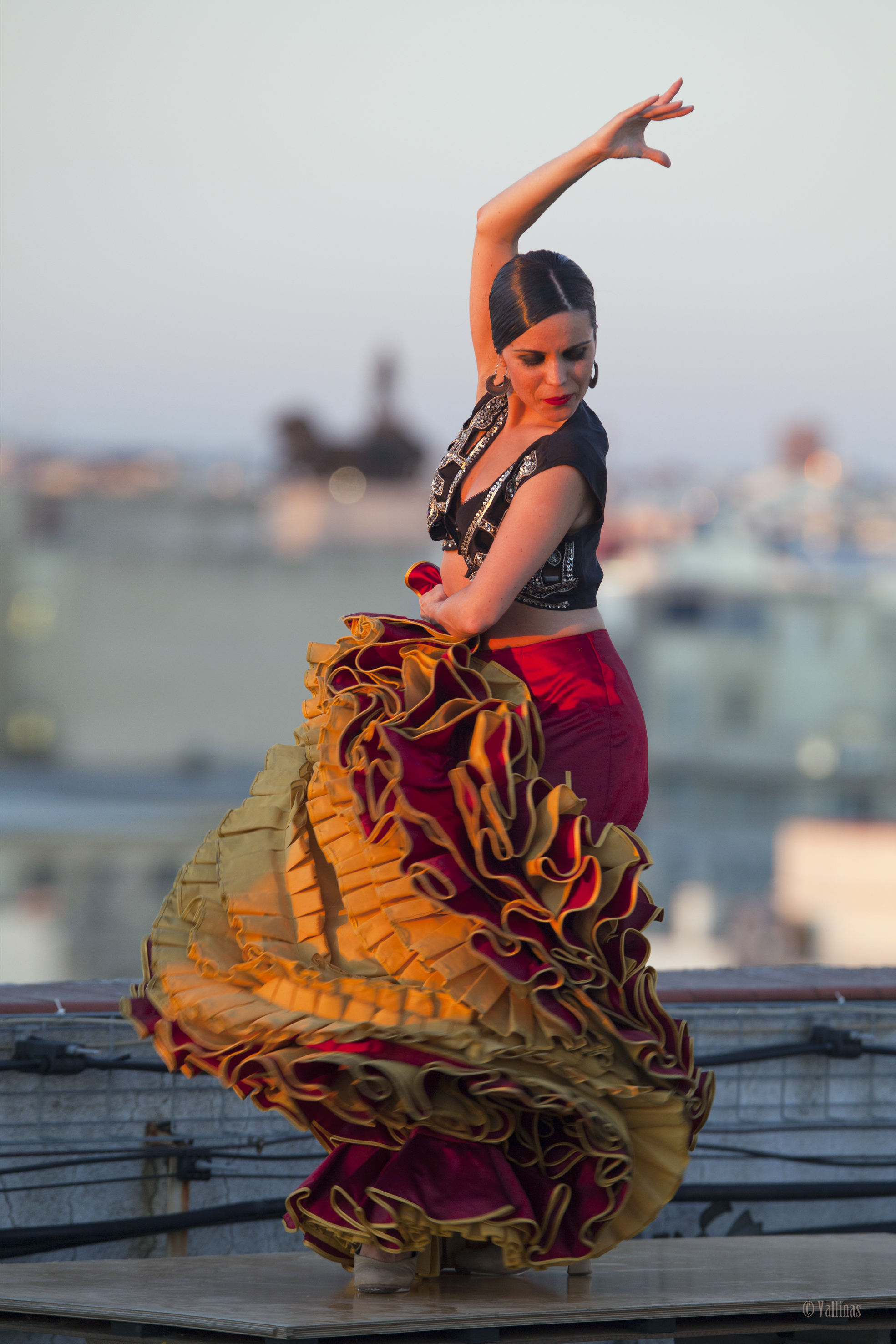 flamenco flamenco sals...