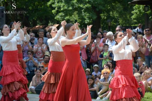Festival Internacional de Danza de Roznov,